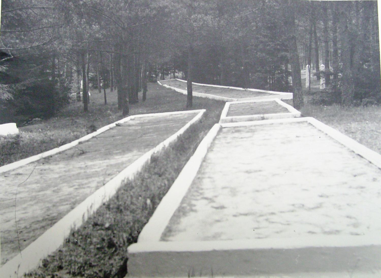 Rašės miško masiniai kapai (Kultūros vertybių registro nuotrauka)